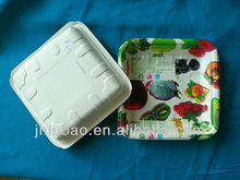 food paper tray