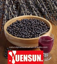 acai berry extract powder/Acai Berry Extract