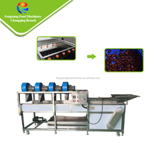HDP-30 Full Automatic Spray Date Washing and Drying Machine