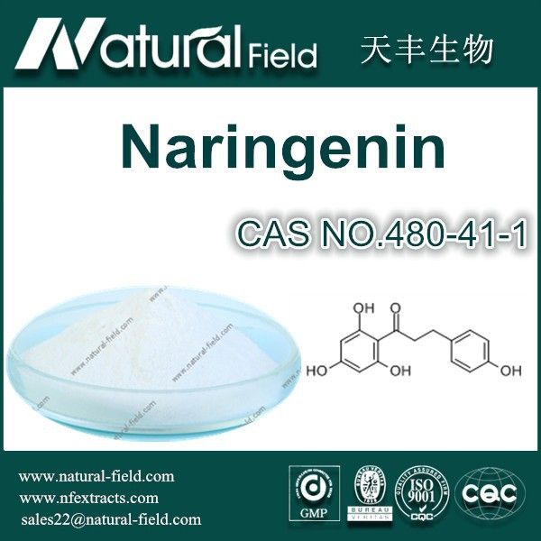 Best Quality Factory Supply Naringenin 98% Powder CAS NO.480-41-1