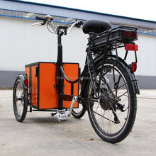 mini electric cargo bike tricycle for pets and children