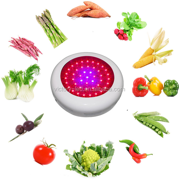Full Spectrum LED Grow Lights 135W LED Bulb Indoor Hydroponic System Plant UFO 45*3W LED Light Best For Growing and Flowering