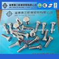 ss304 hex head bolt, DIN931 titanium bolt
