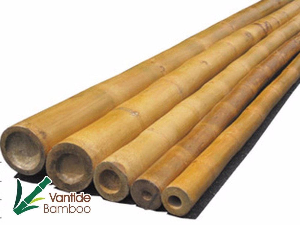 Nature Raw Material Bamboo Suppliers