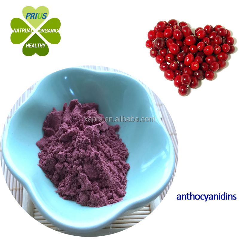 comestic raw material Cranberry extract powder Anthocyanidins for antioxidant ingredient