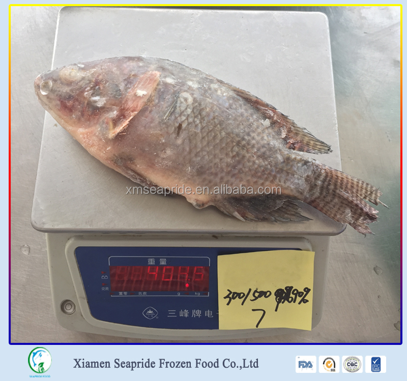 Wholesale Seafood Products Frozen Black And Red Tilapia Fish