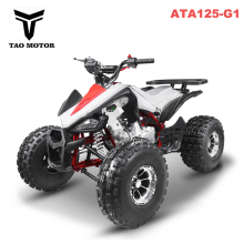 EPA ECE 125cc Cheap 4 wheeler 4x4 ATV for adults ATA125-G1
