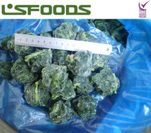China Wholesale IQF Frozen Spinach Prices