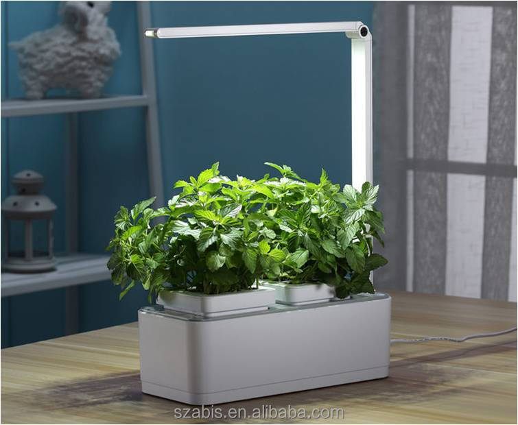 Shenzhen Factory Creative Lamp Smart Mini Garden Led Light