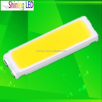 LED Encapsulation Series CRI>70Ra 55-65LM 0.5W SMD LED 7020 Warm White