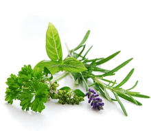 Buying herbs online in china bulk supply excellent herb