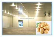 Cold storage refrigerator freezer room price for potato