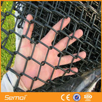 Hot Sale High Security PVC Coated Chain Link Fence And Chain Link Fence Locks