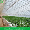 Solar Greenhouse For Agricultural