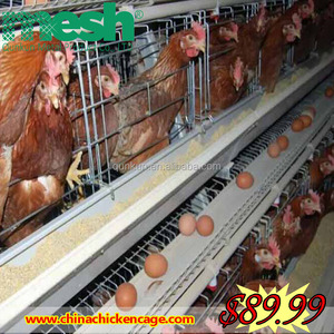 Galvanized steel frame turkey project design layer chicken cages for kenya poultry farm