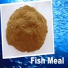 china bulk fish meal
