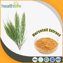 Natural Horsetail Extract, 7% Organic Silica Powder