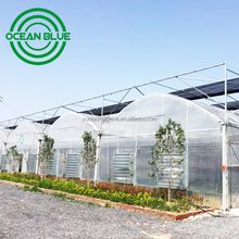 OCEAN BLUE double layers inflatable agriculture film greenhouse with CE certificates