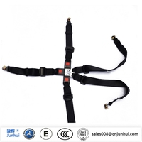 5 point universal seat safety belt for racing car