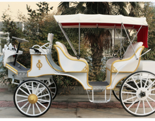 Double-Row Electric Horse-Drawn Carriage.