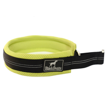 Pet Product Nylon Fluorescence Dog Training Collar