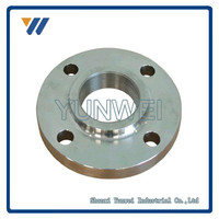 Oil and Gas Pipe Wholesale Top Quality Customized CS/SS WN Flange