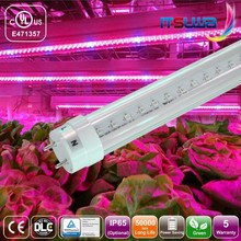 battery operated led plant indoor light tube t8 5 years warranty for plant growth,t8 led tube lighting