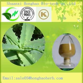 Hot Sale Aloe Vera Extract/Aloe Vera Gel/Barbaloin 98%/Anti-Bactericidal Plant Extract