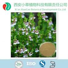 pure natural eyebright extract, eyebright powder, eyebright p.e. with the best price