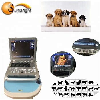 Color Vet use Diagnostic Machine Veterinary color images 3D Ultrasound