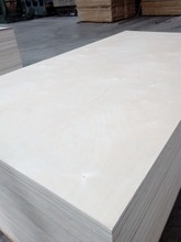 E1 Glue Good Quality Combie Core Russian Birch Plywood