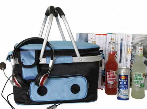 Fitness insulated cooler bag radio