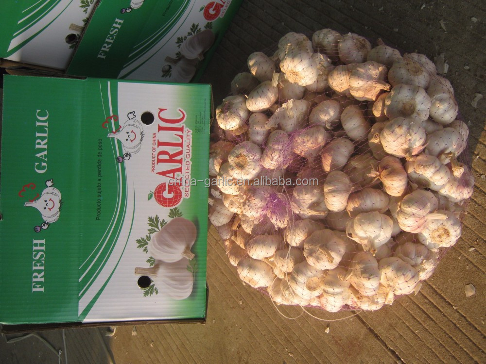 Chinese normal white garlic price AJO/AIL/ALHO