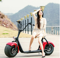 1000W Brushless Adult Electric scrooser city Scooter, 2 Wheels Electric Motorcycle,