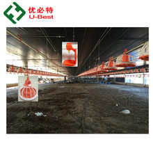Pre-fabricated House/Poultry Farm Construction/Chicken House Used Equipment for Broiler Birds