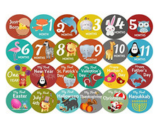 First Year Monthly Milestone Felt Animal Photo Sharing Baby Belly Stickers 1-12 Months