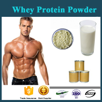 High quality Whey Protein Isolate 90% for Building Muscle