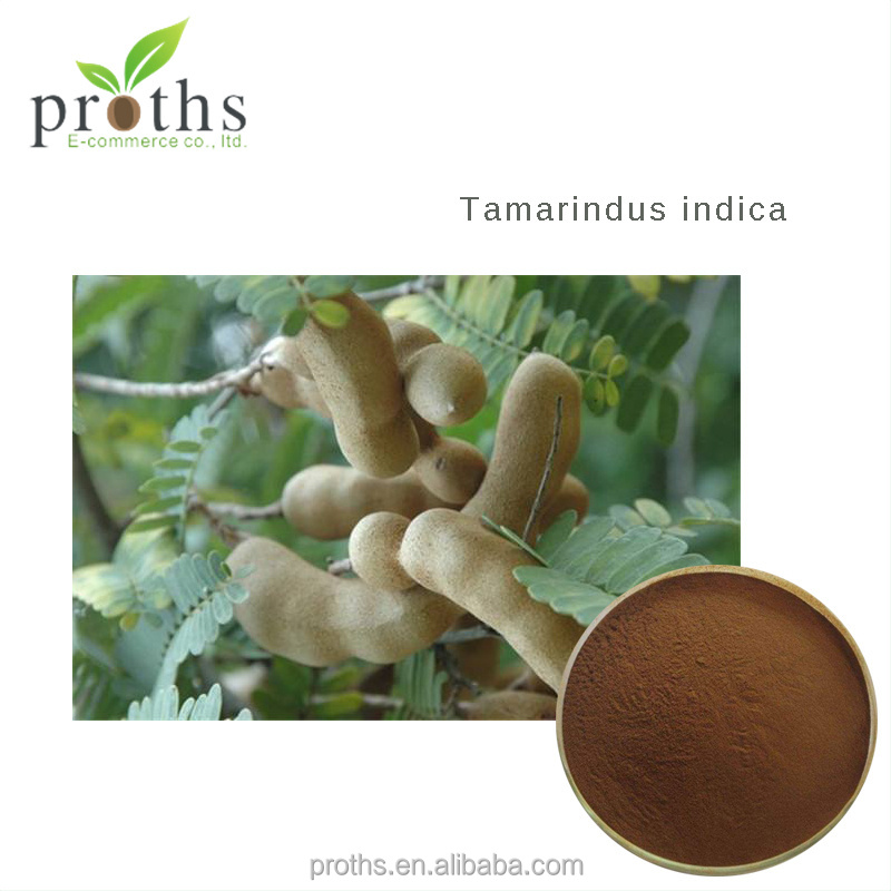 Hot sale free sample best sale tamarindus indica p.e. free sample