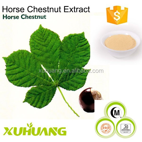 Manufacturer Supply The Lowest Price and The Top Quality Horse Chestnut Extract/Horse Chestnut