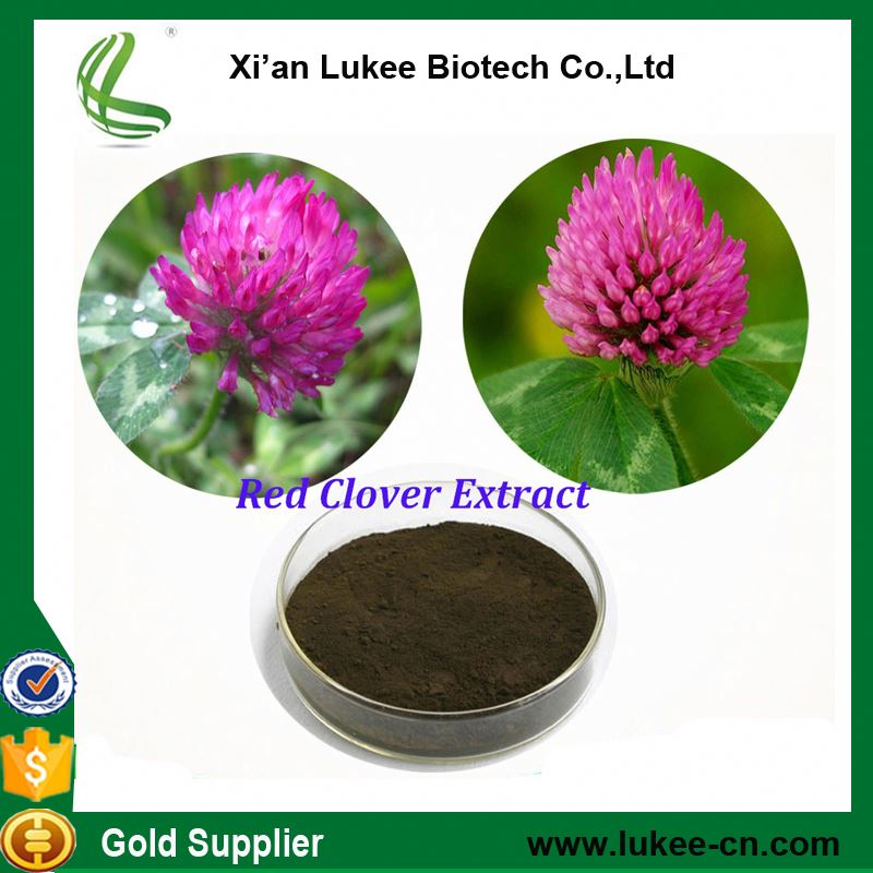 2017 HOT sale red clover extract powder Isoflavones 8% FREE sample High quality