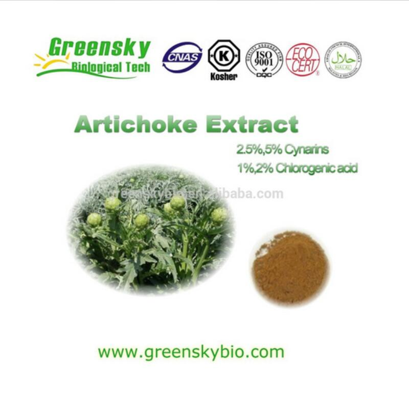 High quality Artichoke Extract with 5% Cynarin UV