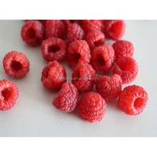 Chinese frozen fruit raspberries with factory price HACCP Certificate