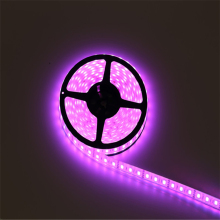 Non-waterproof flexible single color ip20 12v 2835smd led strip bar belt light