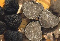 Draied (powder) Black Truffles