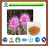 GMP factory supply herb organic Rhaponticum uniflorm extract powder
