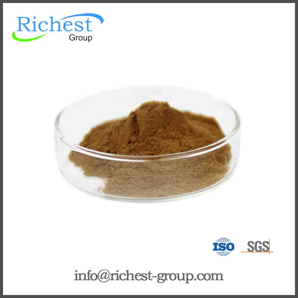 High quality Black Tea Extract Theaflavin