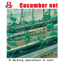 Supply 2017 Heavy Duty Long-lasting pe trellis netting/climbing plant net cucumber support netting