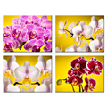Charming Flowers Giclee Print Butterfly Orchid Canvas Print for Living Room Decoration Wholesale 4 Pieces