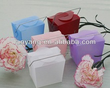 Mini Asian Style Chinese Take Out Clear PVC Favor Box