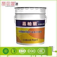 Caboli High-quality Acrylic Wall Paint 2014